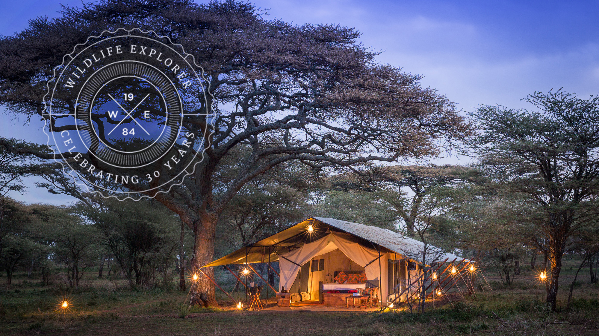 Wildlife Explorer | Dulana Camp | Serengeti